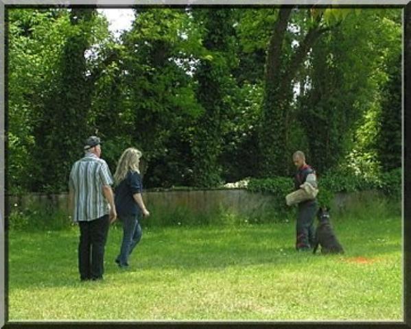 Site d 39 utsar des jardins de passiflore le boxer bring - Les jardins de passiflore ...